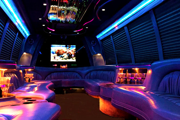 Chattanooga 18 Passenger Party Bus